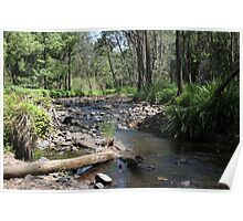 Tallebudgera Creek, Tallebudgera Valley, SE Qld., Australia Poster