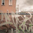 Graffiti by KateJasmine