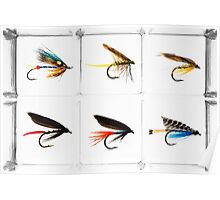 Fly Fishing Lure Poster