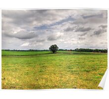 Lone Tree In A Field Poster