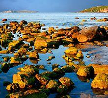 A Rocky Coastline by jwwallace