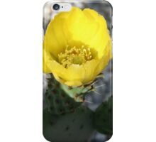 Opuntia Ficus-Indica (Flower of the Prickly Pear) iPhone Case/Skin