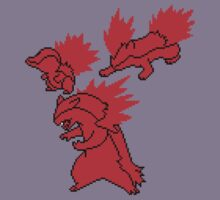 Fire Johto Starters Silohouettes by Funkymunkey