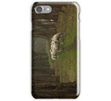 Sheep on the dike iPhone Case/Skin