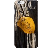 The Flow of Fall iPhone Case/Skin
