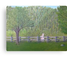 White Horse Awaits Visit Canvas Print