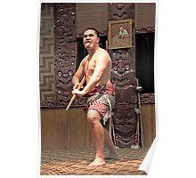 Warrior Stance Poster