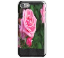 Pink Roses in Anzures 1 Blank P4F0 iPhone Case/Skin