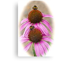 Bee Happy! Canvas Print