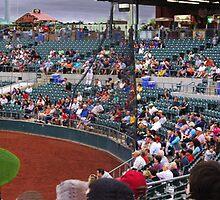 Baseball Crowd by Kenneth Hoffman