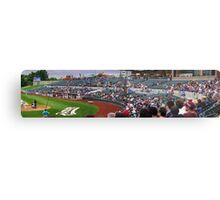 Baseball Crowd Metal Print