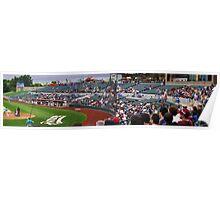 Baseball Crowd Poster