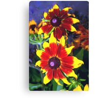 Very bright daisies Canvas Print