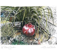 A Potter's Garden (No.8) by Kerryn Madsen-Pietsch
