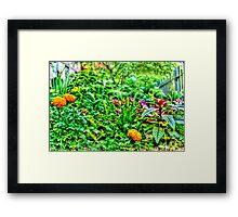 Green Garden in New York, USA Framed Print
