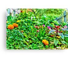 Green Garden in New York, USA Canvas Print