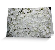 White Love Greeting Card