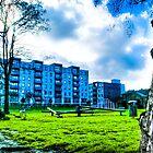 East London Greenery and Blue Buildings, UK by Noam  Kostucki
