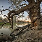 Billabong - Back O Bourke - NSW by Frank Moroni