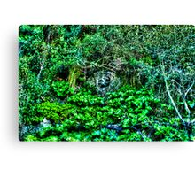 Growing Nature Around the Gibraltar Bunkers Canvas Print