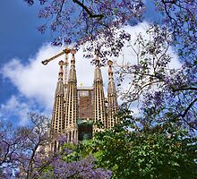 Sagrada Familia by Aase