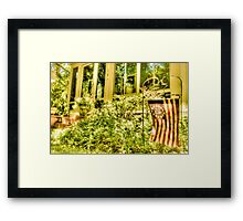American Flag in Assateague, Maryland, USA Framed Print