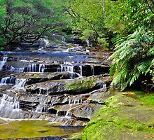 Leura Cascades #3 by Terry Everson