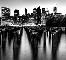 Brooklyn Bridge Park by Roddy Atkinson