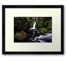 Graceful Wahclella Framed Print