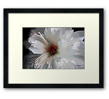 The Timid Peony Framed Print