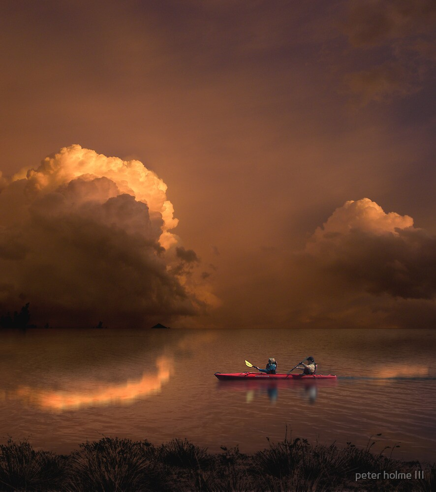 2980 by peter holme III