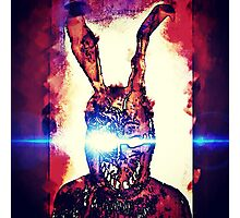 Frank The Rabbit  Photographic Print