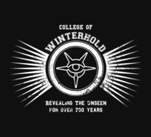 College of winterhold by LabRatBiatch