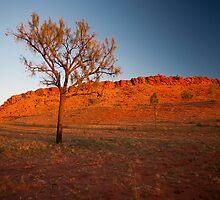 Sunrise on a Rocky Outcrop by Richard  Windeyer