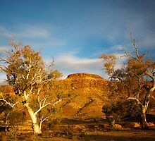 Mt Chambers late afternoon by Richard  Windeyer