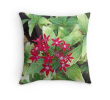 Perfect Red Throw Pillow