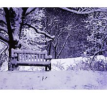 Ann Arbor Arboretum Winter Snow Photographic Print