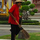 Sweeping and Cleaning Up After Tourist by Christian Eccleston
