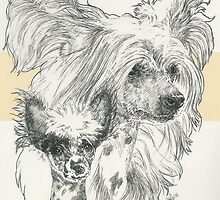 Chinese Crested, Father & Son by BarbBarcikKeith
