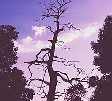 Purple Tree by Sophie Lasson