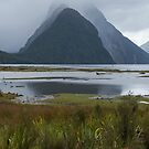 In the Mist _ Milford Sound by Barbara Burkhardt