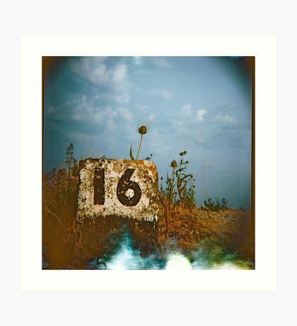 #16 Art Print