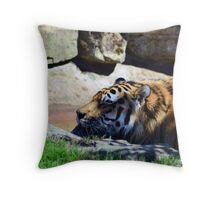 Tiger playing Throw Pillow
