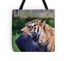 Tiger playing Tote Bag