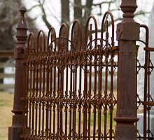 Cemetery Fence by Jane Jenkins