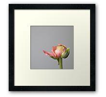 wit a flower ... Framed Print