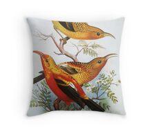 I'iwi Native Hawaiian Birds Throw Pillow
