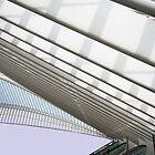 Calatrava in Liege by rita vita finzi