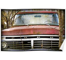 Forgotten Ford rustic truck photography Poster
