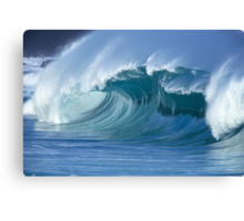 Glassy Wave in Hawaii Canvas Print